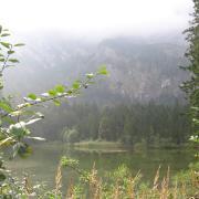 """Австрия-2009. """"Ландшафтпарк"""". Озеро"""
