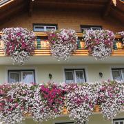 Австрия-2009. Wolfgangsee. Австрийская деревня