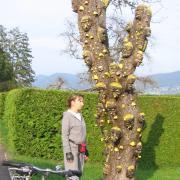 Австрия-2009. Unterach am Attersee