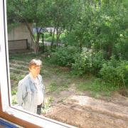 Вид из окна бильярдной